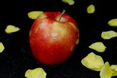 Apple with yellow rose petals on a black velvet background, fruit - stock photo