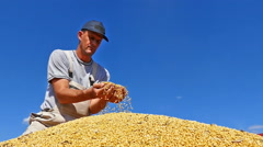 Farmer with cupped hands holding soybeans grains in his hand Stock Footage