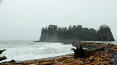 La Push, Olympic National Park - stock footage