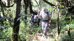 INDIA, NOVEMBER 2015, Member DPAA Walk Through India Jungle Ascend Mountain - stock footage
