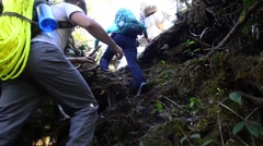 INDIA, NOVEMBER 2015, Member DPAA Walk Through India Jungle Ascend Mountain - stock footage