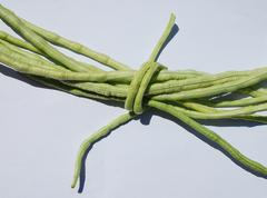 Bundle of Yardlong Beans Stock Photos