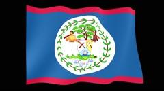 Belizean flag. Waving PNG. - stock footage