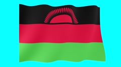 Malawian flag .  Waving PNG. Stock Footage