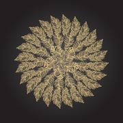 Gold feather hand drawn round rosette on black background Stock Illustration