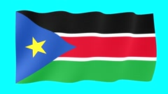 South Sudanese flag .  Waving PNG. - stock footage