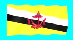 Bruneian flag .  Waving PNG. - stock footage