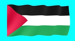 Palestinian flag .  Waving PNG. - stock footage