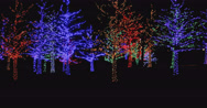 Stock Video Footage of Christmas decorations in Neighborhood Park