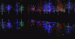 Christmas decorations in Neighborhood Park Stock Footage