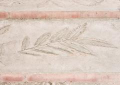 Leaves imprint in the sandstone Stock Photos