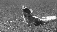 African American Black Man Woman Pick Cotton 1930s Vintage Film Home Movie 8803 - stock footage