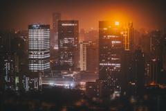 Shanghai night skyline Stock Photos