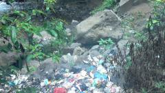 Stock Video Footage of Rubbish lying near stream in jungle