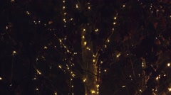 Blinking led light holiday decoration on deciduous tree - stock footage