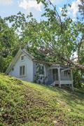 Falling tree after hard storm on damage house Stock Photos