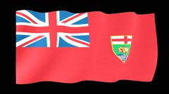 Flag of the Canadian Province of Manitoba. Waving (PNG) computer animatie. Stock Footage