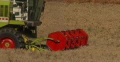 Grain Crops Harvest Stock Footage