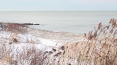Wintery tall dry grass and Lake Erie waves rolling on sandy snowy beach Stock Footage
