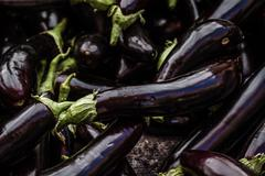 Group of Fresh Eggplants in Marketplace - stock photo