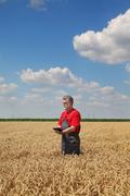 Farmer or agronomist inspect wheat field - stock photo