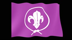 World Scouts flag. Waving (PNG) computer animatie. - stock footage