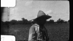 Picking Cotton Field Sharecropper 1930s Vintage Film Home Movie 8819 Stock Footage