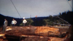 1949: Management visits logging operation of 1000 year old growth trees. DEL Stock Footage