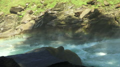 Waterfall krimml detail. Stock Footage