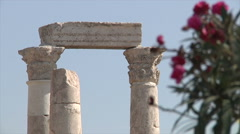 Roses and pillars shift focus - stock footage