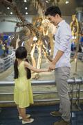Stock Photo of Young father and daughter in museum of natural history
