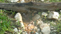 Hot spring Mae Kasa. The hot springs is large for the tourists interested - stock footage