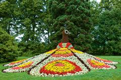 flower bed - stock photo