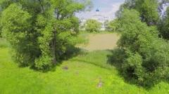 Pond covered by duckweed near Saint Trinity Danilov cloister - stock footage
