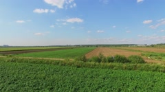 Farm field during wetting at summer sunny day. Aerial view - stock footage
