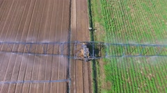 Farm field during pouring at summer sunny day. Aerial view Stock Footage