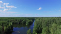 Forest area with blue river at summer sunny day. Aerial view Stock Footage