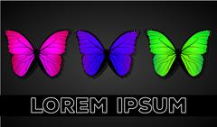 Butterflys on a dark background Stock Illustration