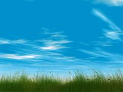 juicy green grass on a background cloudy sky - stock illustration