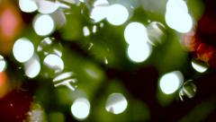 Christmas Tree Out of Focus - stock footage