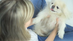 Woman  and her dog in the house Stock Footage