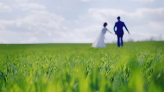 Blurred silhouettes of the newlyweds go away on green grass Stock Footage