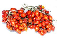 Tomatoes of Vesuvius Stock Photos