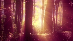 4K Sun Shines through Leaves in Mysterious Deep Forest 2 magic fireflies Stock Footage