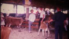 3017 busy barnyard at 4 - H competition - vintage film home movie Stock Footage