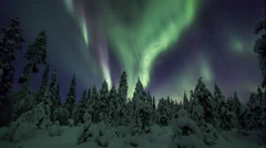 Aurora Borealis (Northern Lights) in Lappland forest Stock Footage