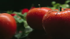 Juicy Tomatoes - stock footage