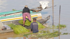 Woman cutting vegetable on boat on Tonle Sap lake,Phnom Krom,Cambodia Stock Footage