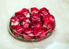 Red rosebuds in glass vase with water on the marble floor. Valentines day rom Stock Photos