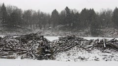 Beaver dam in a snow storm Stock Footage